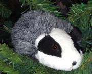 Bobby the pronoun badger